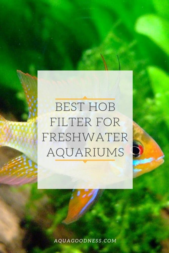 best hand on back hob filter for freshwater aquarium pinterest image