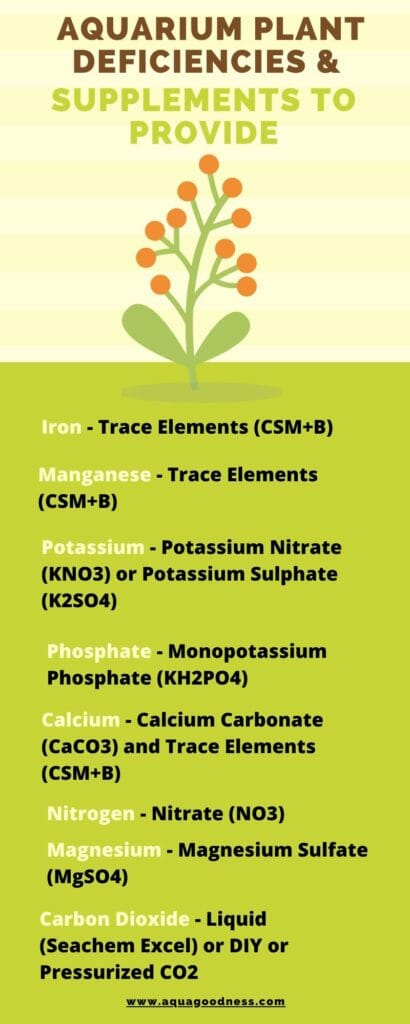 aquarium plant deficiencies and supplements to provide infographic