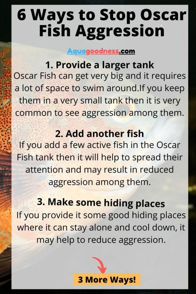 ways to stop oscar fish aggression
