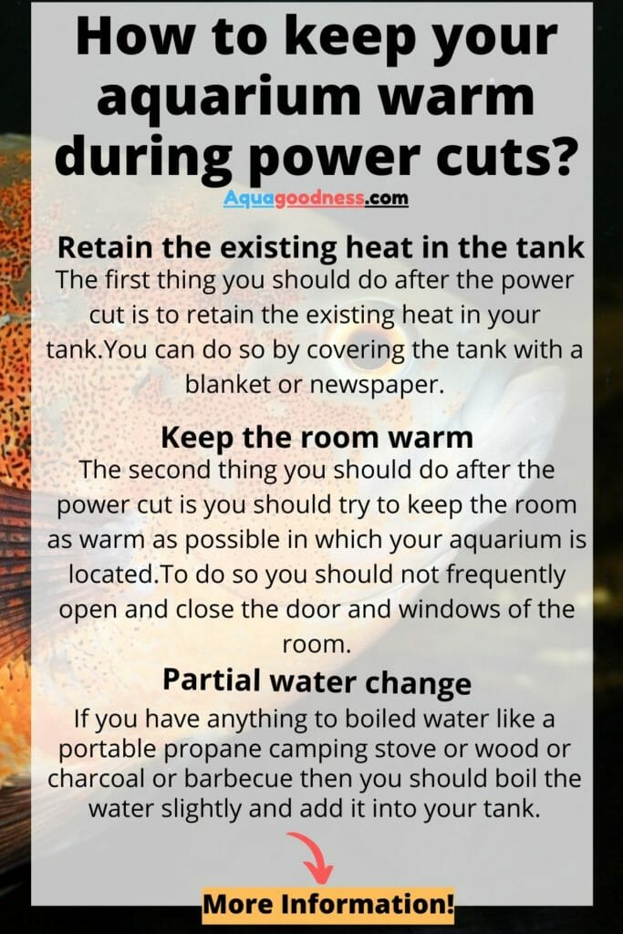 How to keep your aquarium warm during power cuts infographic