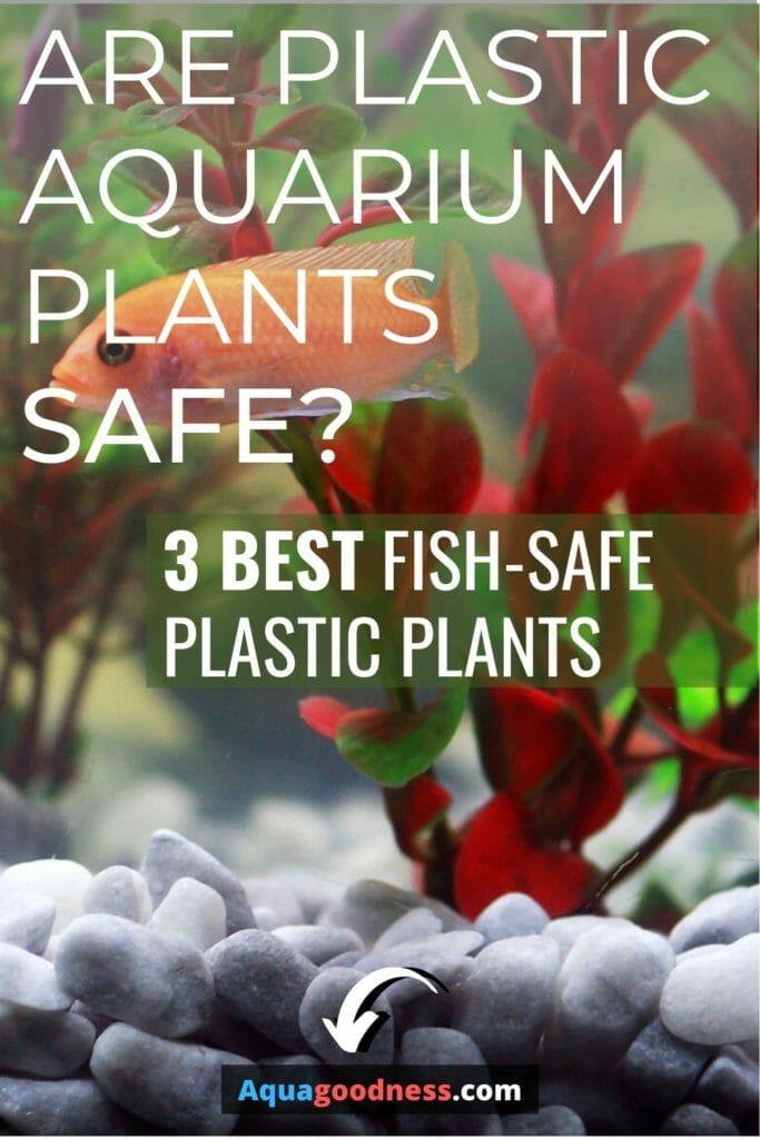 Are Plastic Aquarium Plants Safe? (3 Best fish-safe plastic plants) image