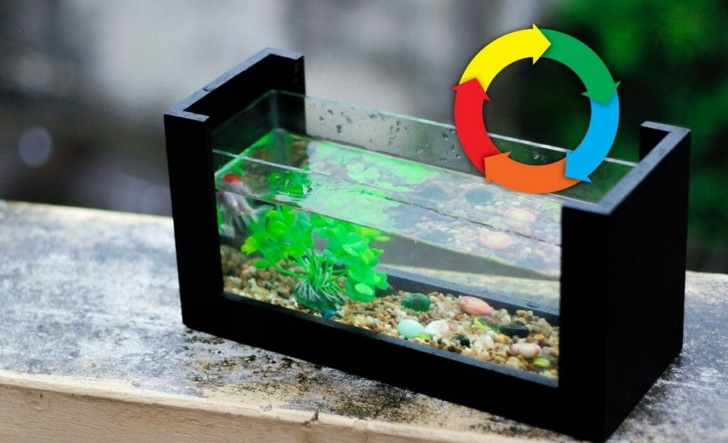 fish tank cycling without fish