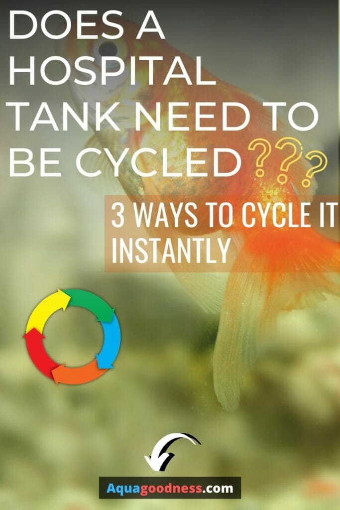 Does a Hospital Tank Need to Be Cycled? (3 Ways to Cycle It Instantly) image