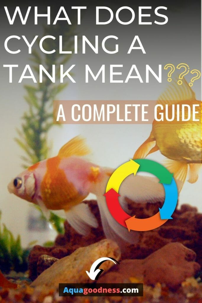 What Does Cycling a Tank Mean? (a Complete Guide) image