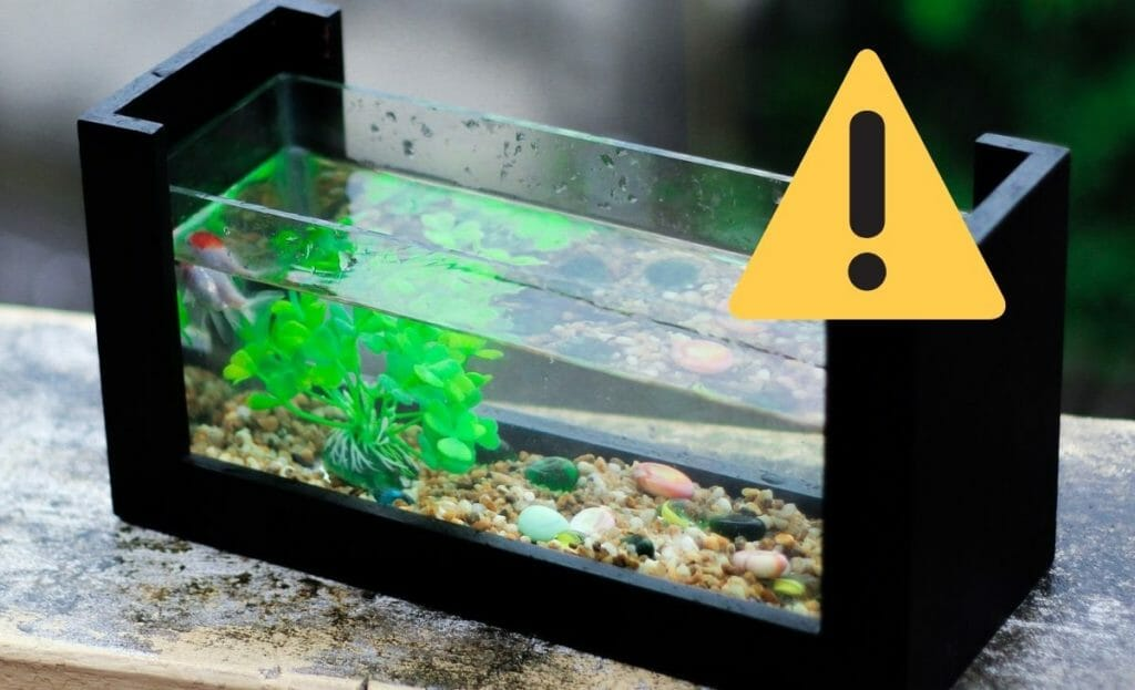 fish tank with warning sign