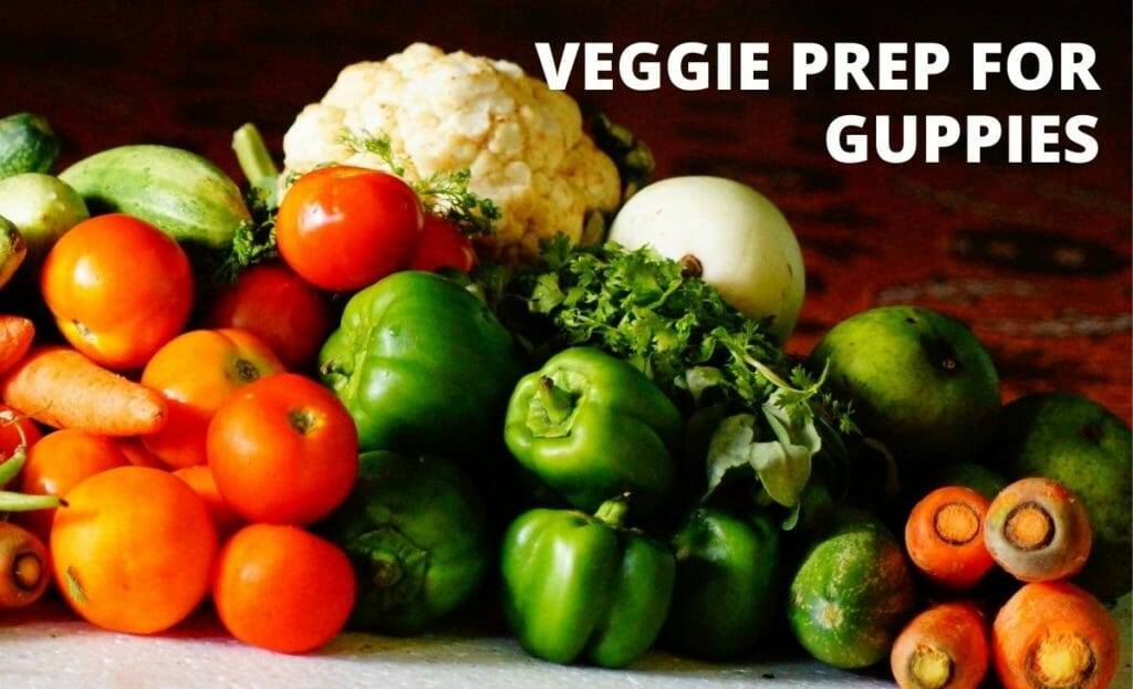 vegetable image with text veggie prep for guppies